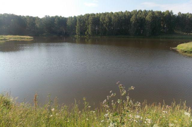 Водоёмы в Кемеровской области стали чище.