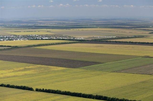 В Омске будут проводить аукционы земель.