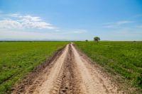 Земельные участки сельскохозяйственного назначения не должны зарастать бурьяном.