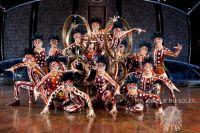 В Омск приедут знаменитые цирковые артисты.