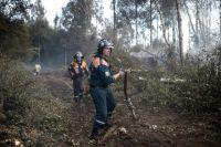 Сотрудники МЧС на месте лесных пожаров в Тверской области