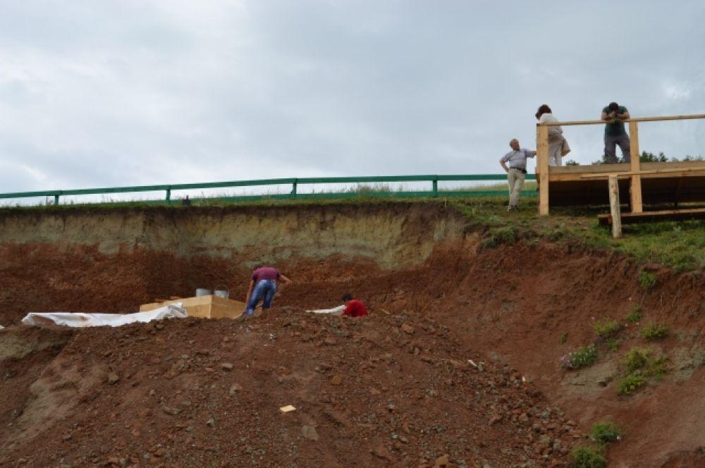 Сейчас сотрудники Кемеровского областного краеведческого музея ведут раскопки на участке Шестаково-3.