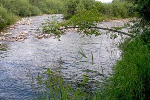 Из-за подъема рек возможно подтопление участков.