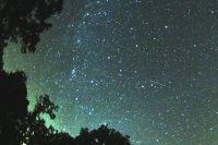 Звездный дождь наблюдается в созвездии Персея.