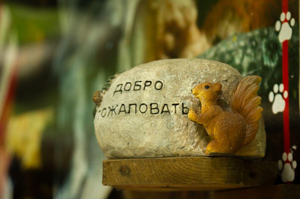 Контактный зоопарк в парке Победы