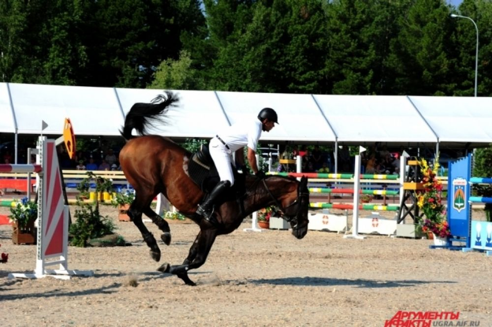 Несмотря на сложность маршрутов, ни одна лошадь не пострадала и не травмировалась.