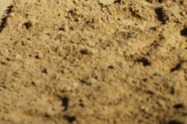 Песок спасёт зимой от гололёда.