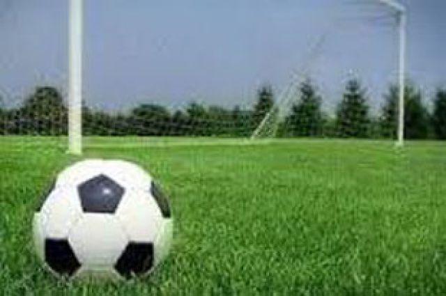 Футбольный мяч перед воротами.