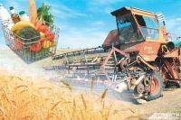 Сегодня крестьянство может рассчитывать на активную поддержку государством
