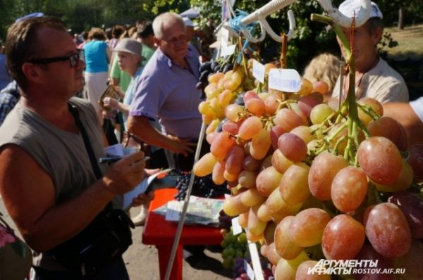 Лучший виноград растёт на Дону.