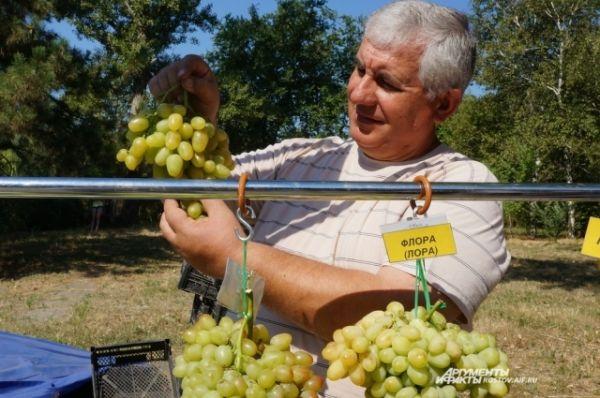 И ещё один сорт столового винограда.