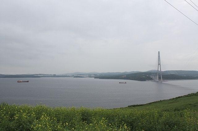 Остров Русский может стать особой экономической зоной.