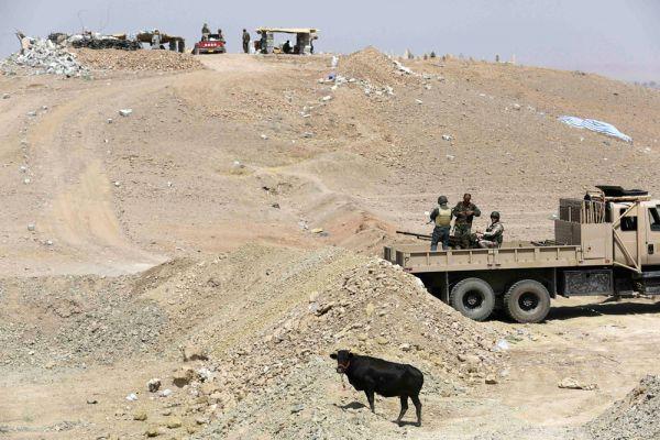 В операции принимали участие истребители и беспилотные летательные аппараты. В Пентагоне утверждают, что в результате авиаударов уничтожена военная техника боевиков «Исламского государства», с помощью которой джихадисты обстреливали скрывающихся в горной местности езидов.