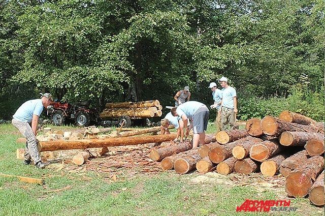 Лес-кругляк используется даже в строительстве экотроп.