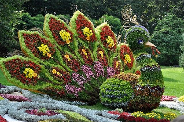 Одна из цветочных композиций выставки на Певческом поле