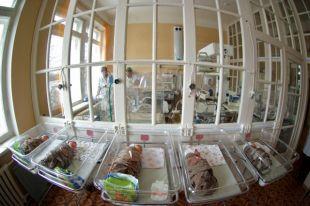 Губернатор Камчатки потребовал разобраться в причинах гибели младенцев