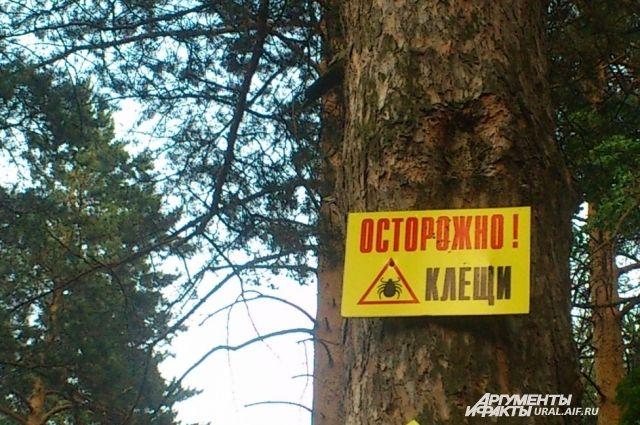 На Среднем Урале сохраняется клещевая опасность