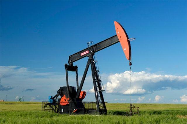 В Омской области будут искать нефть.