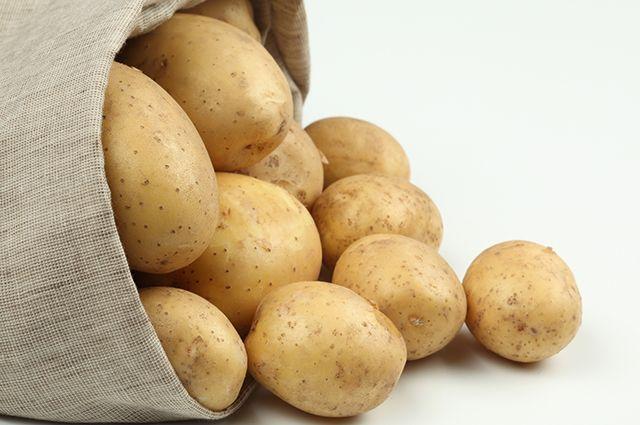 В Омской области будут производить картофель для других районов.