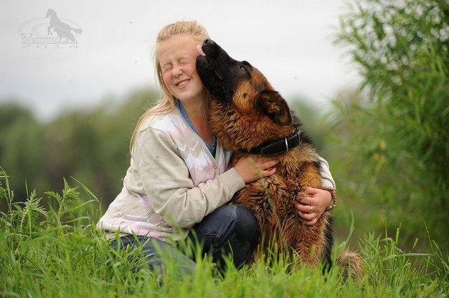 Собака - друг человека. Только человек должен помнить о своей ответственности за воспитание животного.