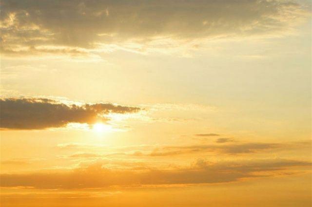 Синоптики пообещали Свердловской области неделю без дождей