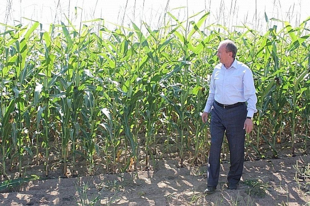 Вице-губернатор отметил, что сейчас район силен в области растениеводства, но должен развиваться дальше.