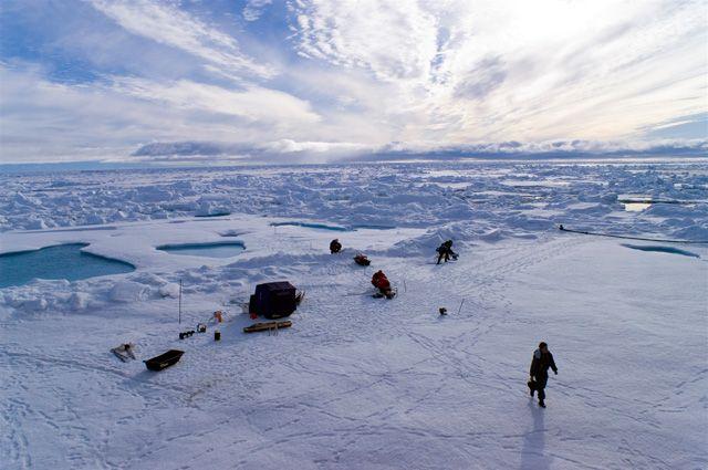 На освоение Арктики нацелят омскую молодежь.