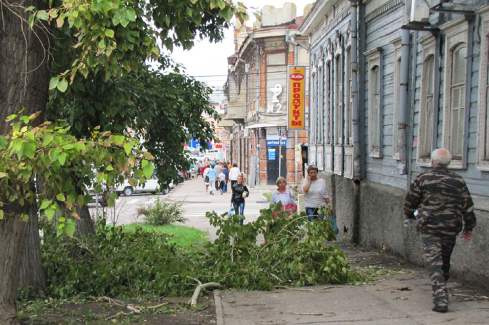 Сломано дерево на улице Матросова