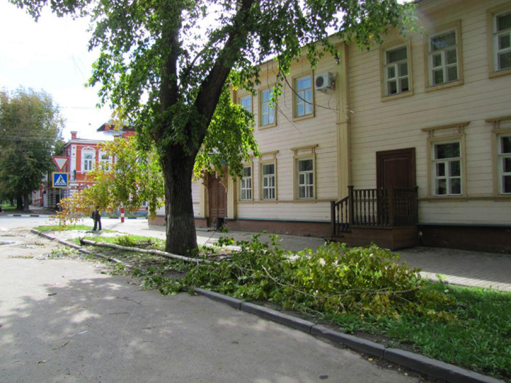 На улице Ленина тоже сломан тополь…