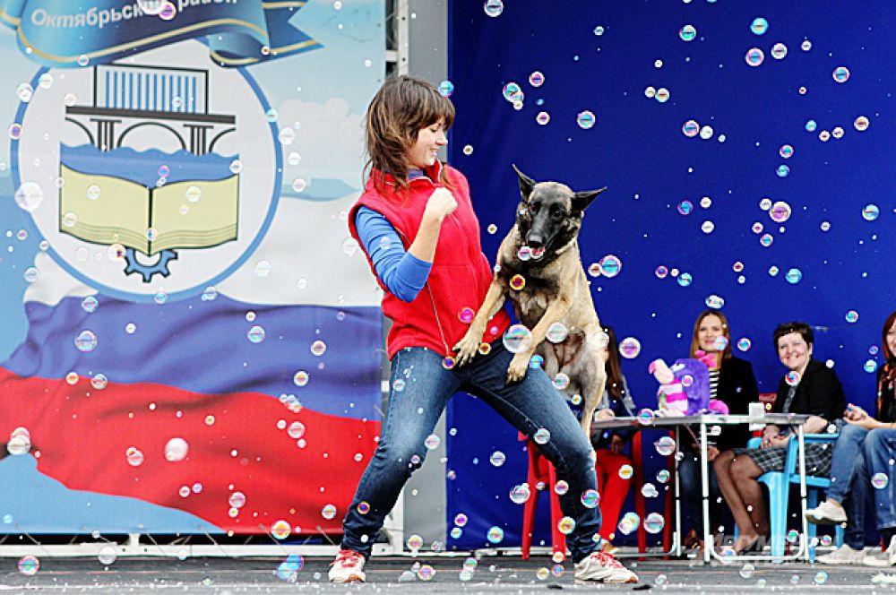 Гостей карнавала порадовали не только участники, но и собаки из приюта, которые приехали, чтобы оживить и без того весёлое мероприятие.
