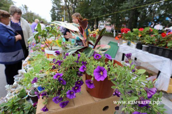 Главная цель - знакомство жителей Камчатского края с продукцией местных производителей.