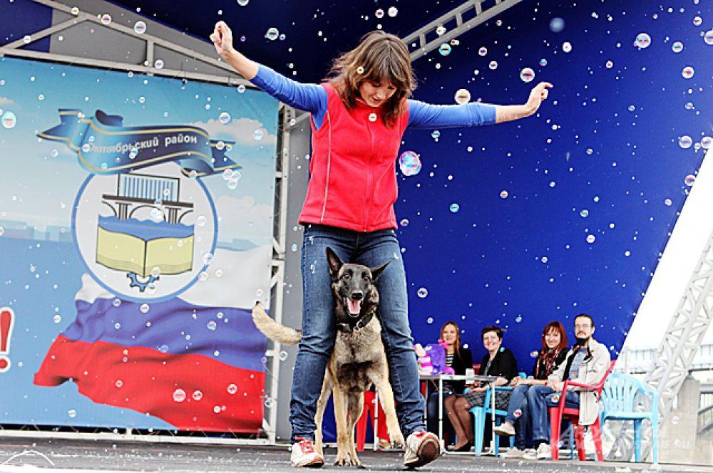 Умники и умницы из приюта - не отставали артистизмом от домашних собак.