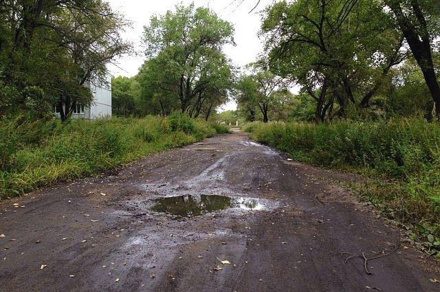 Дорога в Пограничном районе.