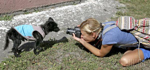 Болонка Фантик – самая старая собака Украины