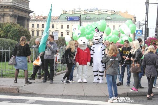 У Казанского собора малышей учили ПДД собачка АиФка и Зебра.