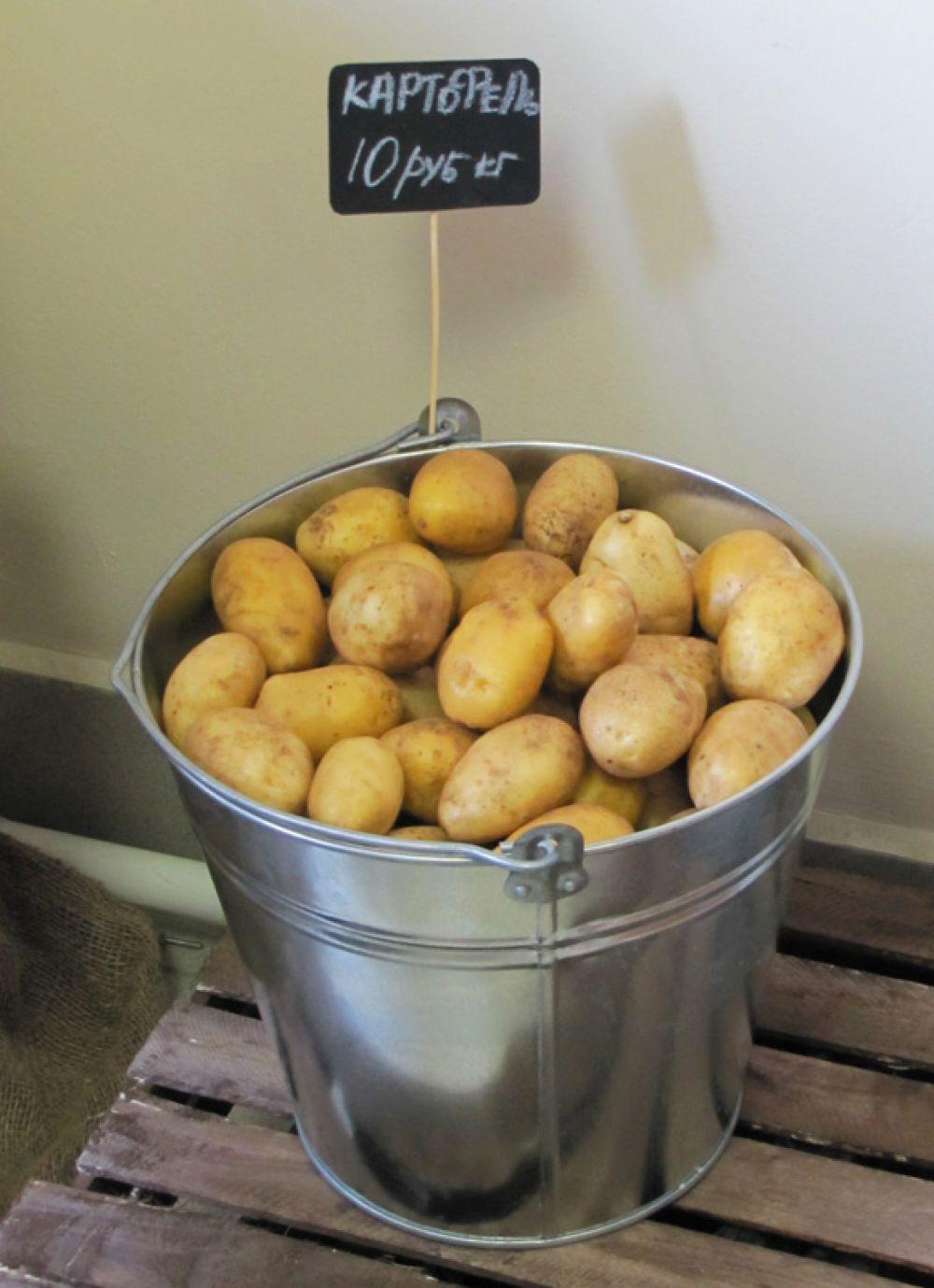 Картошка от фермеров – по 10 рублей