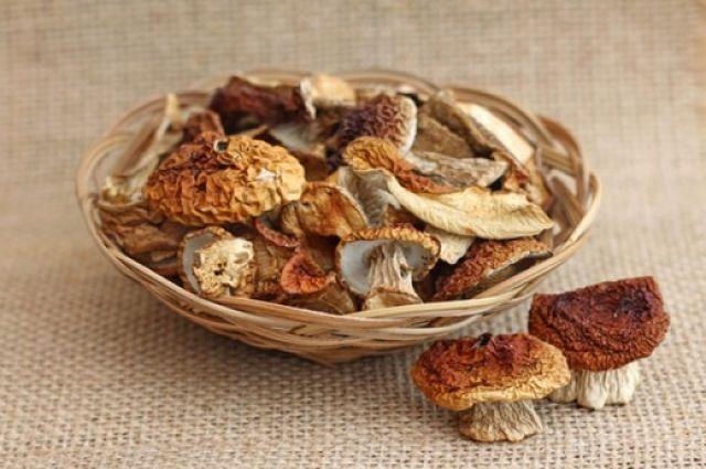 Сушение грибов – лучший способ их хранения