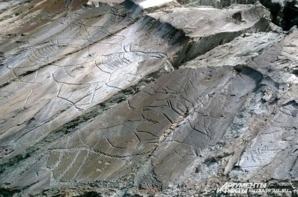 Скала с петроглифами дала начало первому в Сибири музеефицированному памятнику наскального искусства.