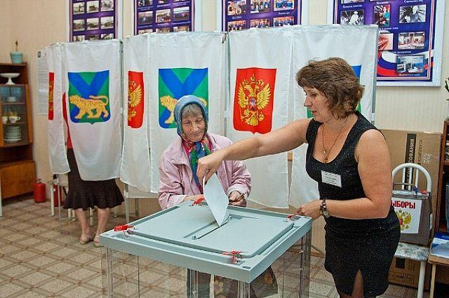 Выборы в городе Артёме.