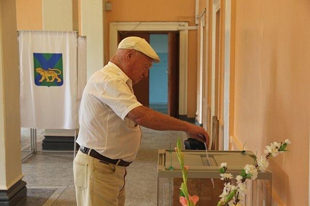 Выборы в Артёме.