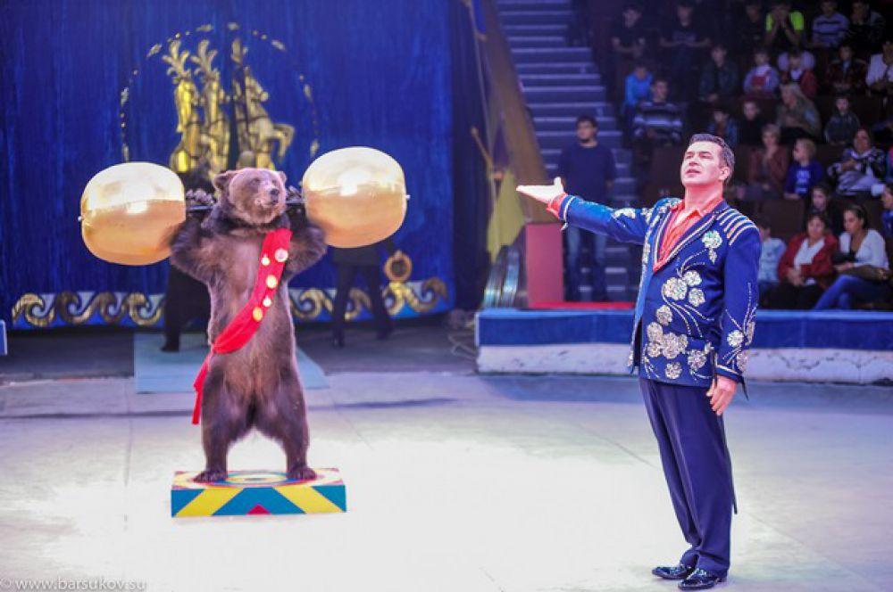 Программа «Фиеста» в омском цирке.