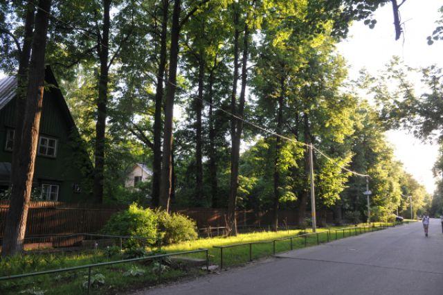 Посёлок Сокол — первый кооперативный жилой посёлок в Москве, каждая улица которого названа в честь какого-нибудь художника (Кипренского, Венецианова, Врубеля, Шишкина).