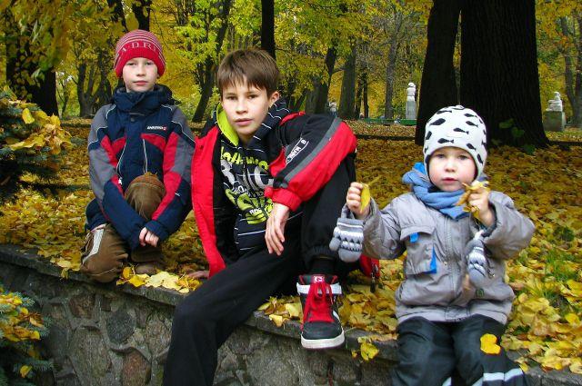 Егор, Никита и Иван Ульяновы мечтают о своём доме и собаке.