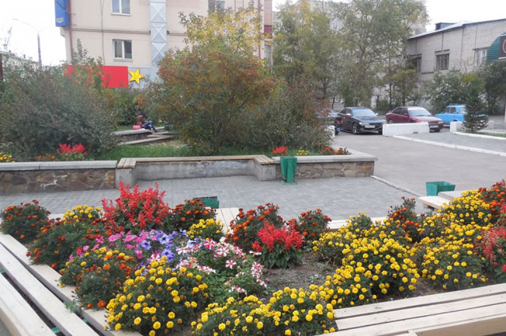 Цветов в столице края ещё много.
