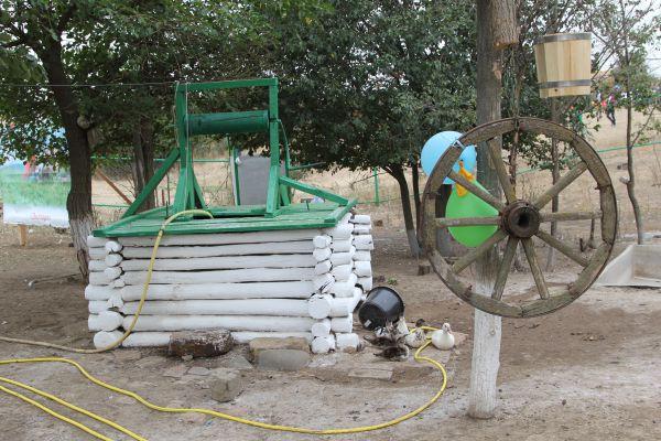 Колодец и живые уточки на экоплощадке в Кундрюченской
