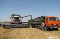 В Омской области активно занимаются уборкой урожая.
