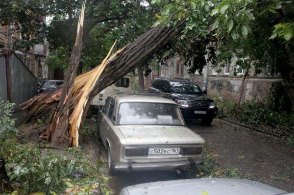 Поваленные ураганом деревья в центре Ростова - обычное явление.