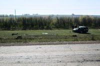 При ДТП люди вылетели в лобовое стекло автомобиля.