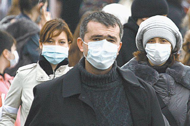 Эпидемия гриппа в Челябинской области ожидается в январе 2015 года