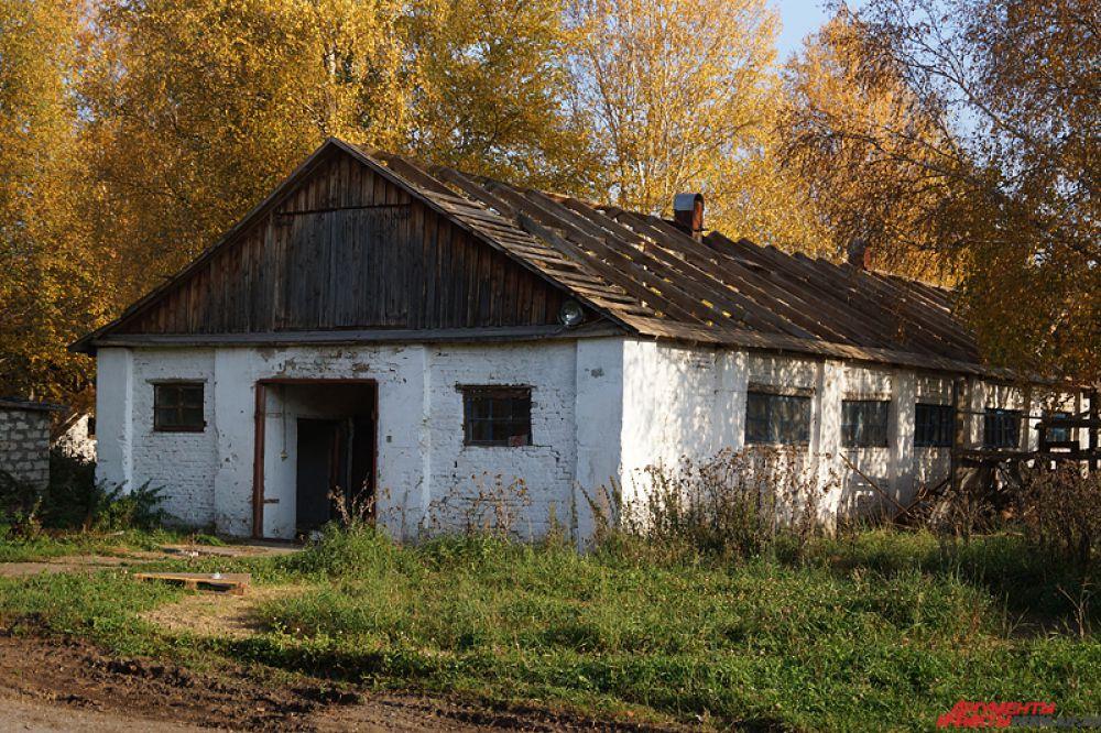 Уничтожение ипподрома приведет к культурному коллапсу в Пермском крае, так как для многих жителей это место является прекрасной площадкой для семейного отдыха.